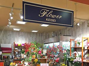 flower-store-takanedai